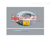 UL3529硅橡胶电线
